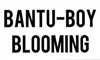 Bantu-Boy Blooming